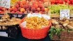 Chanterelles at the Rialto Market, Venice, Italy